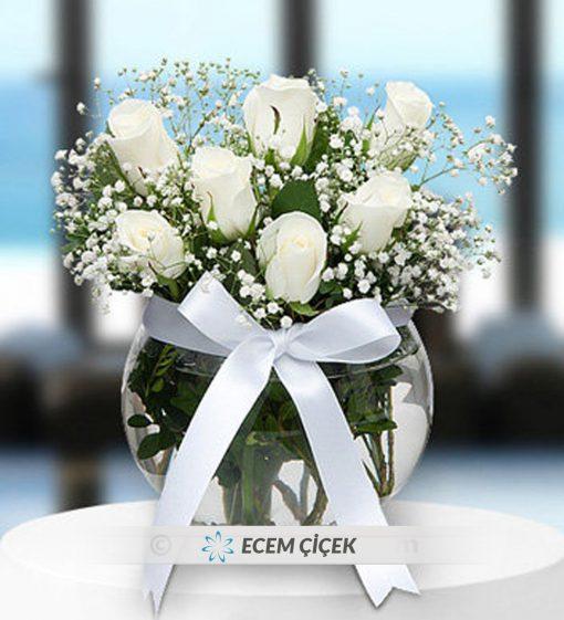 Akvaryumda Beyaz Güller