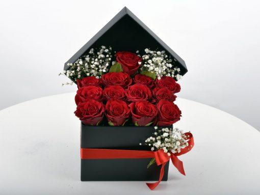 290595-uploadedfiles-mt1_55jp-1485165125