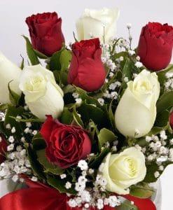 Aşk Küresi Kırmızı Beyaz Güller – 3