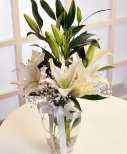 Beyaz Lilyumun Zarafeti – 2