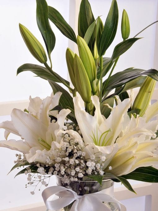 Beyaz Lilyumun Zarafeti – 3