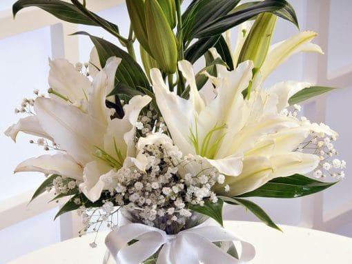 Beyaz Lilyumun Zarafeti – 4